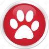 Animal footprint icon red glossy round button