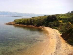 utazas-andromeda-travel-horvatorszag-nyaralas-vir-sziget45